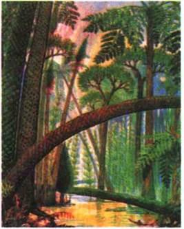 Рослини кам яновугільного періоду