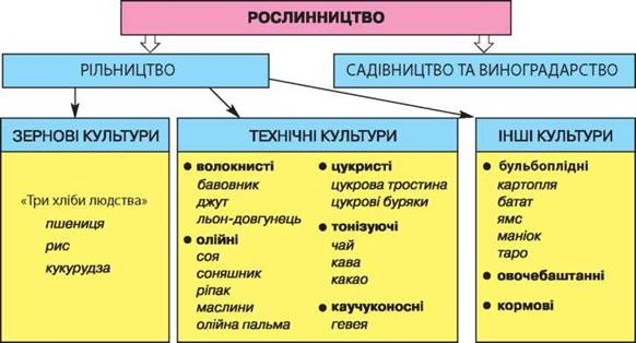 Схема господарства
