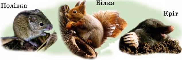 Природознавство Казка Про Зиму Коротко